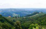 シュタイヤマルク地方の旅 ワインのテースティングと景色を楽しむ!