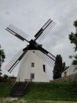 シーウィンケルの風車 とゴルズGolsのワイン蔵