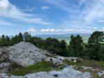 カリグ山の山登りとアイルランドの森林のこと